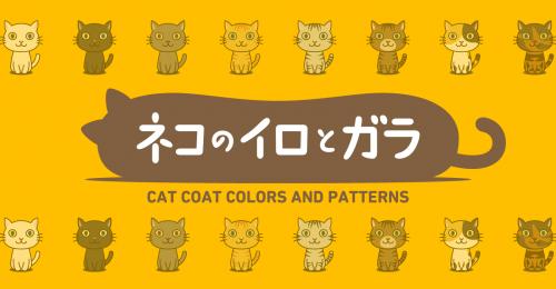 猫の色と柄まとめ、描いてみました